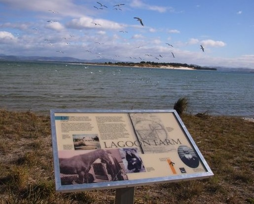 'Lagoon Farm' Historical Sign on the foreshore at Dodges Primary School